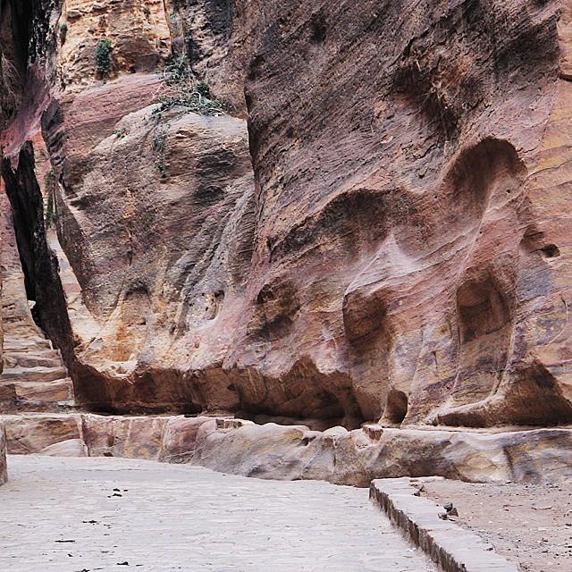 camel wall